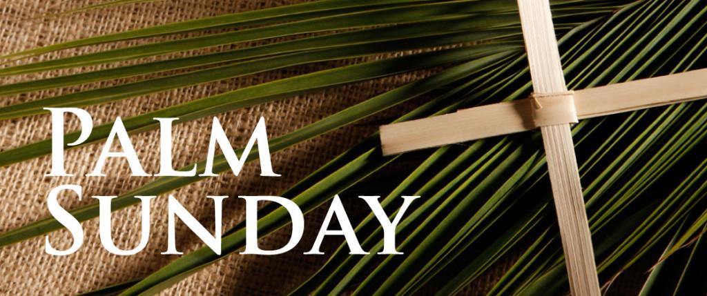Palm-Sunday-2017-Cross-Picture – The New York Avenue Presbyterian Church |  Washington, DC | NYAPC.org